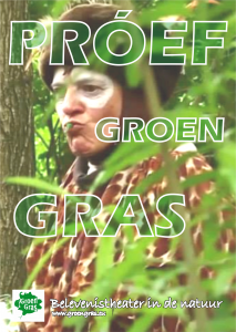 Groen Gras 2